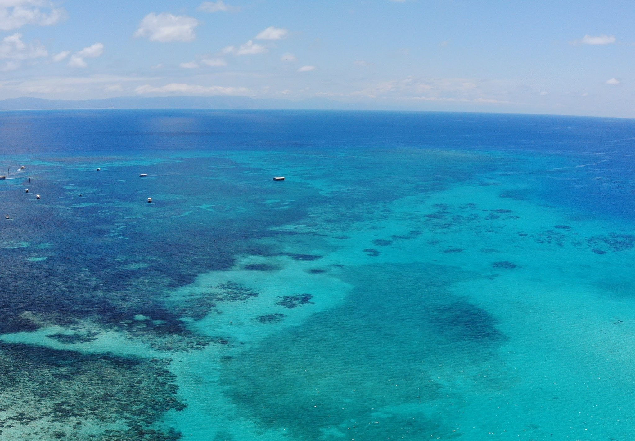 Defending The Great Barrier Reef Against Ocean Acidification